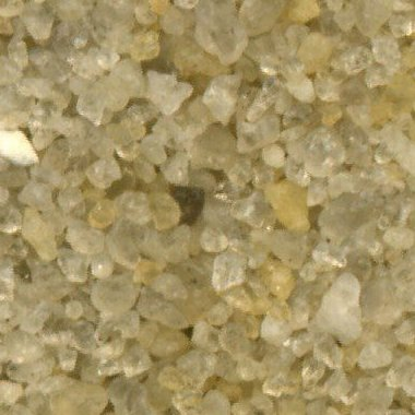 Sand Collection - Sand from Barbados