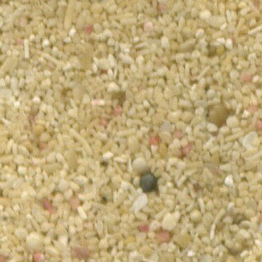 Sand Collection - Sand from Saint Lucia