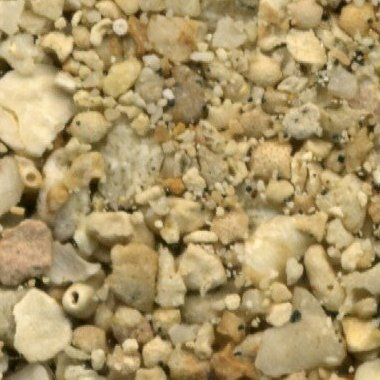 Sand Collection - Sand from Guam